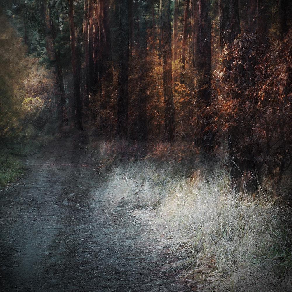 Pożegnanie jesieni III, vigrafia 042, 56x60