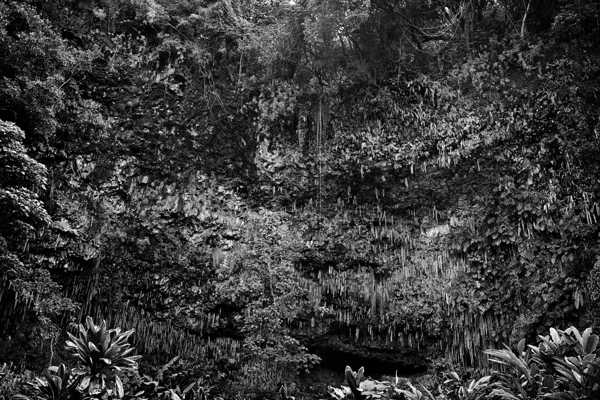 Fern Grotto B&W.jpg
