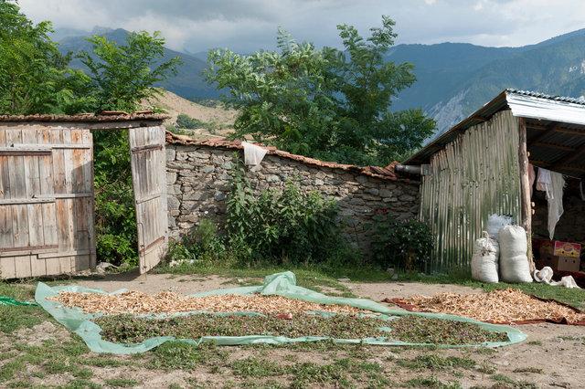 ElsMartens_Albania_8829.jpg