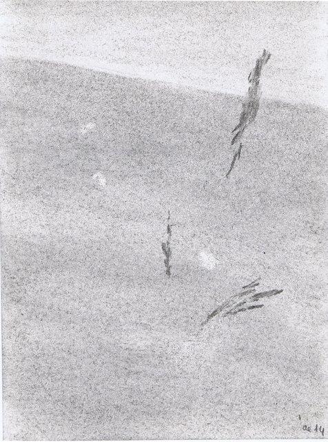 Prairie en liesse III, 2014