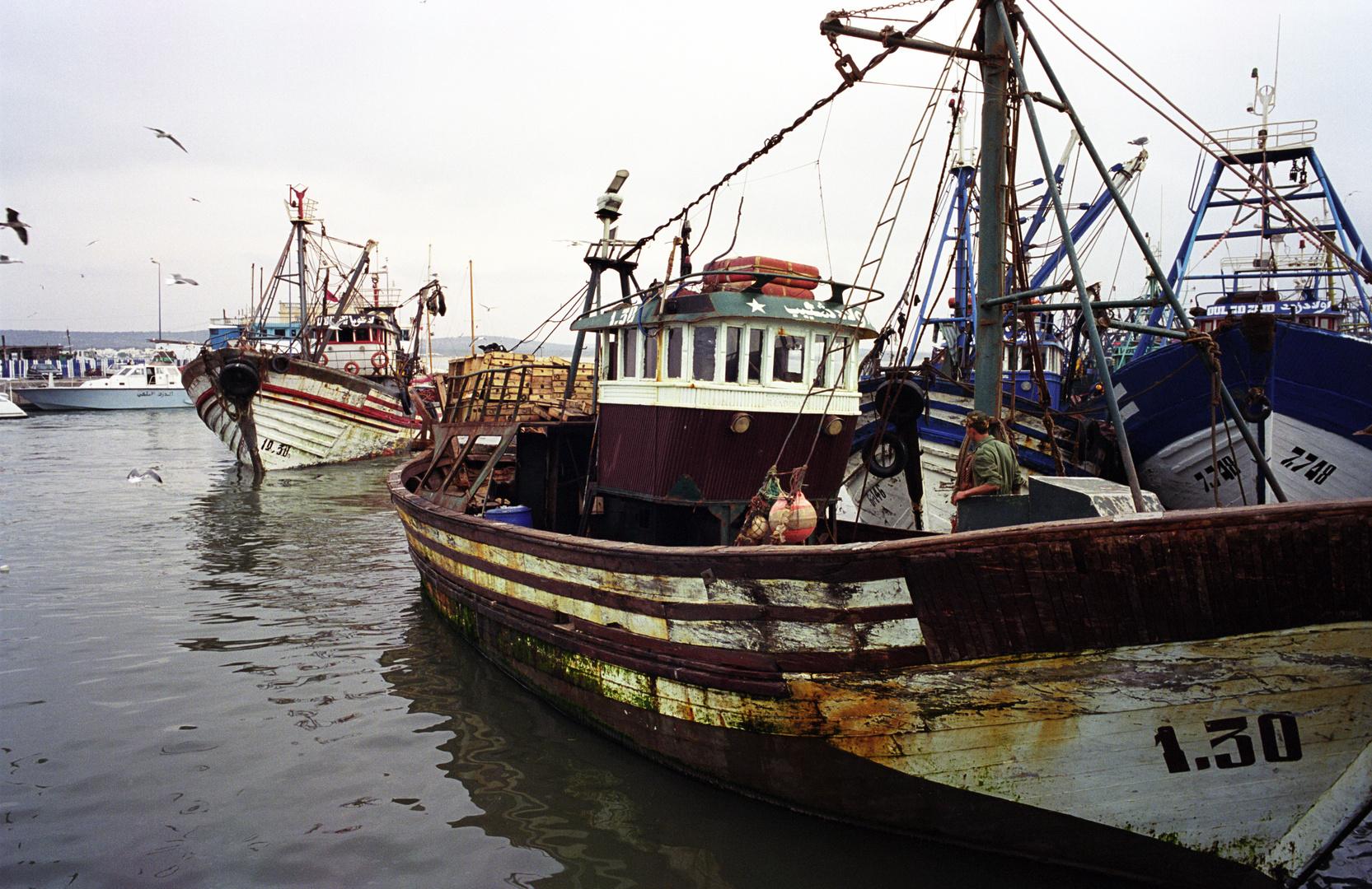 1080_Fishing Boat_Essaouira_CM_di.jpg