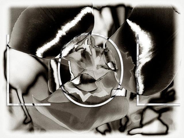 Love-28f.jpg
