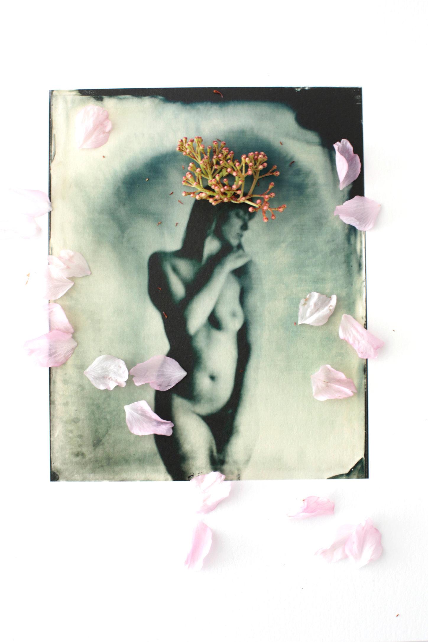 FLOWERS_1_035.JPG