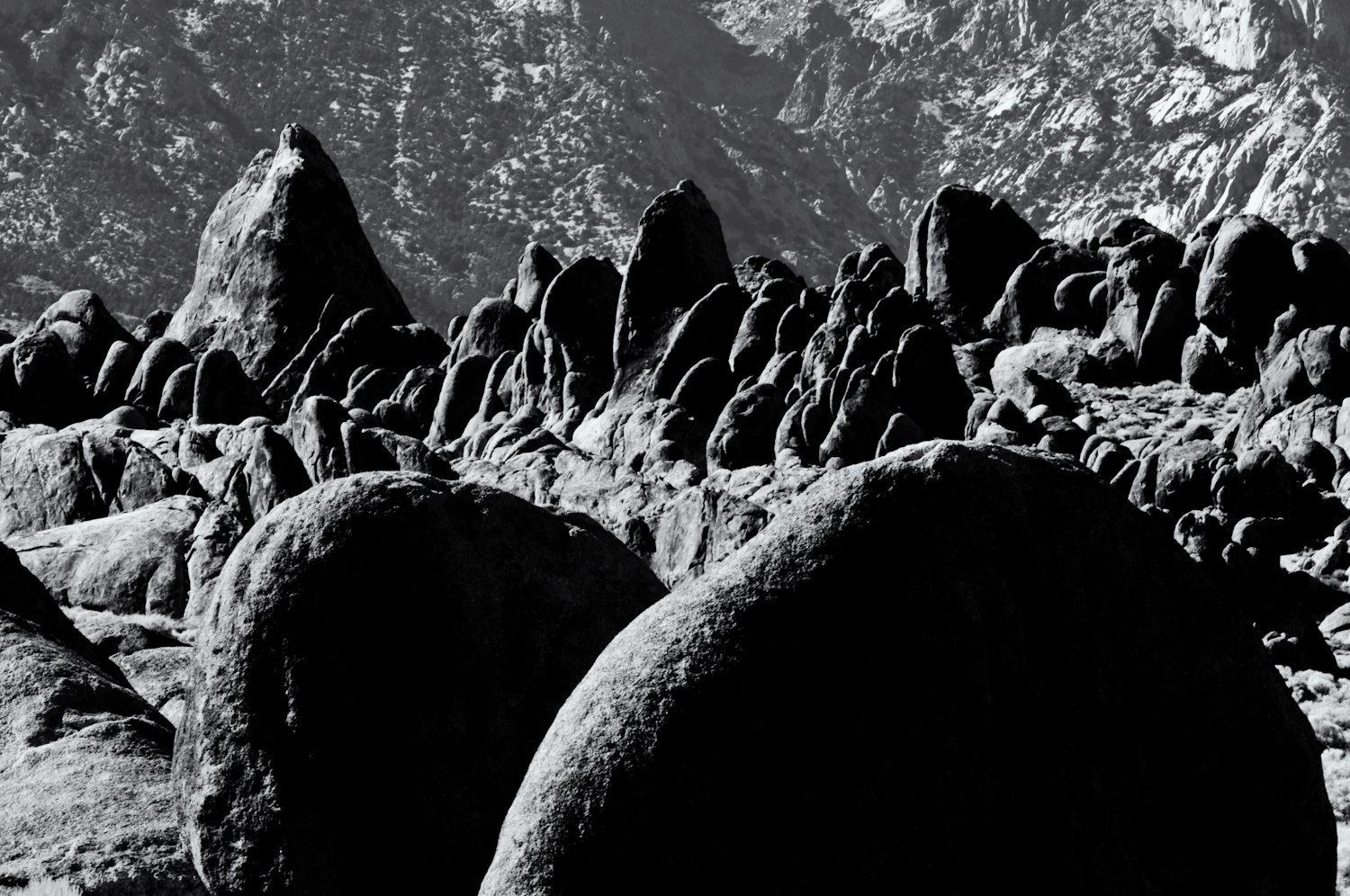Alabama Hills Photo Workshops 10-09-8.jpg