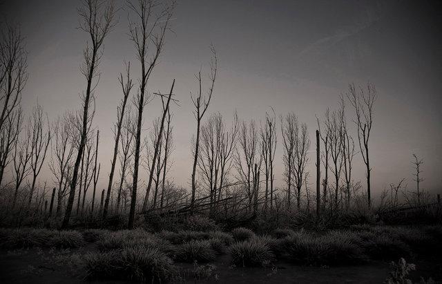 winterview 3