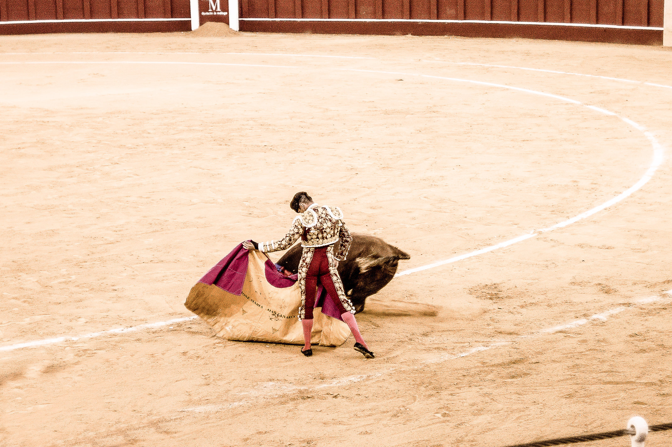 The Bullfight-194-bewerkt.jpg