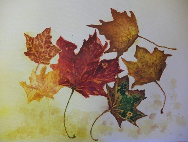 Autumn Leaves by Alison Gracie