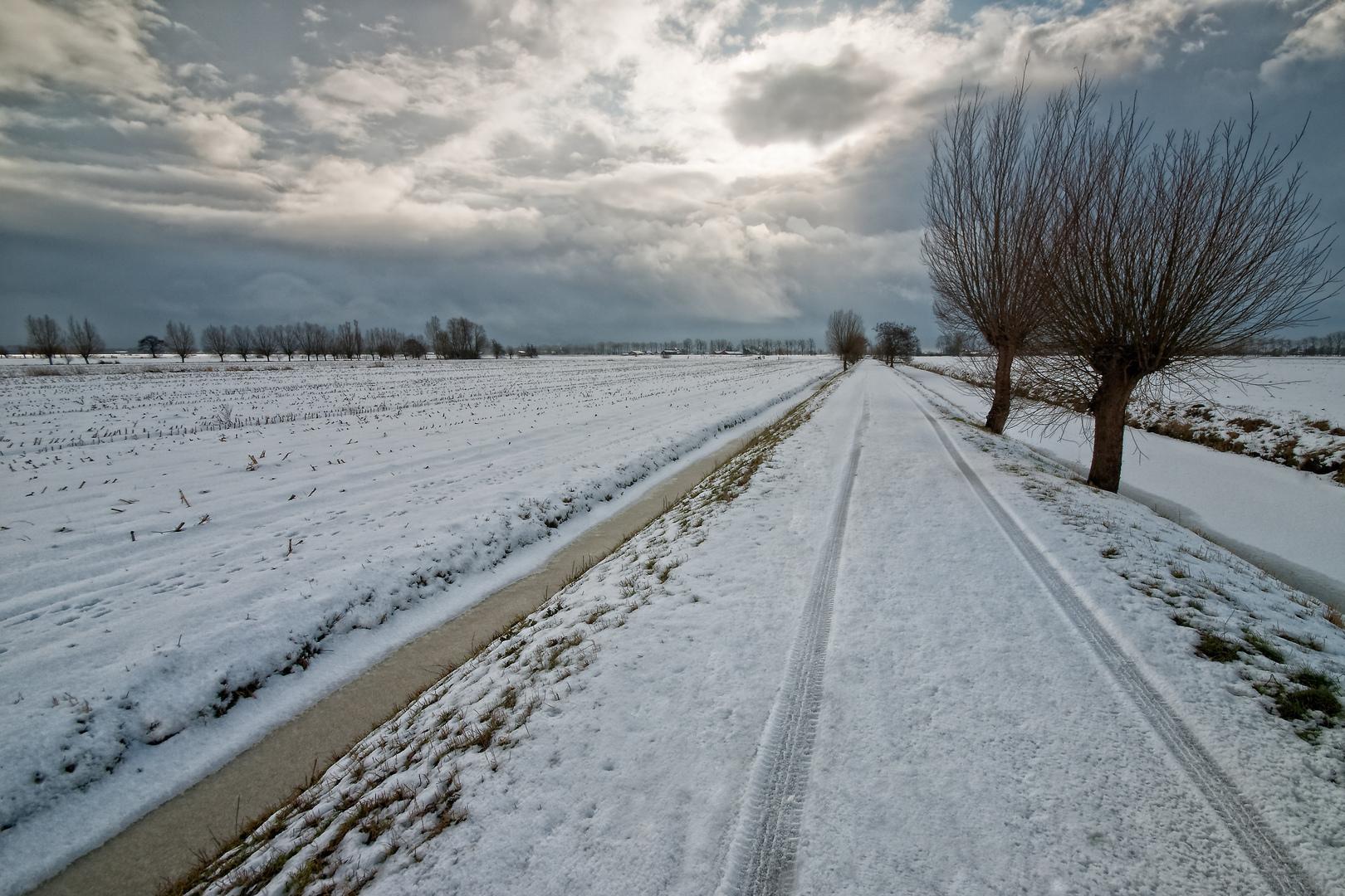 Besneeuwde polderweg in Polder Rijnenburg
