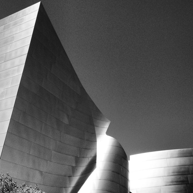 WALT DISNEY CONCERT HALL - B&W 7