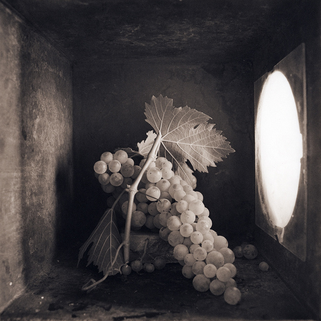 Grapes (Full Bunch), c 2000