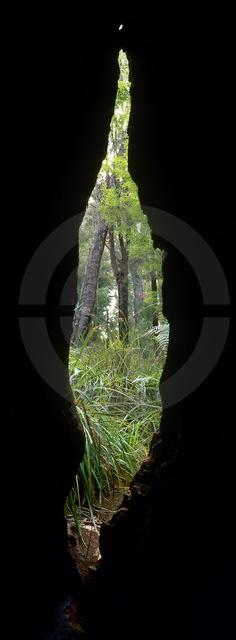 Australien_Copyright_060.jpg