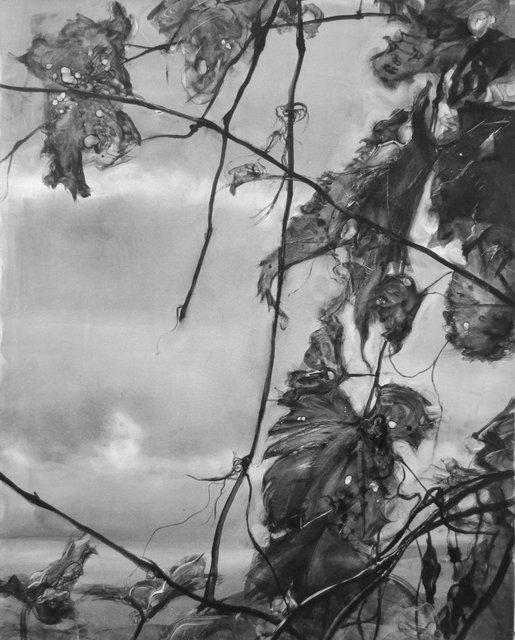 "Wild Grapes- Vermont    26 x 21"""