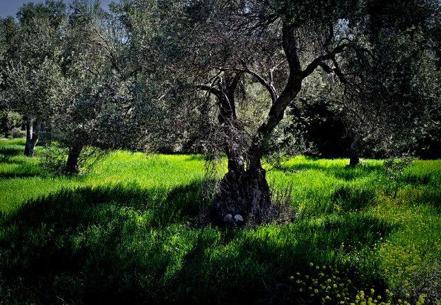 crete april 2014