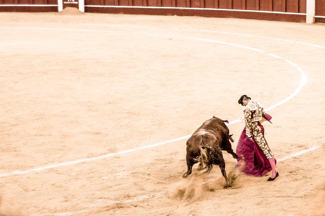 The Bullfight-193-bewerkt-2.jpg