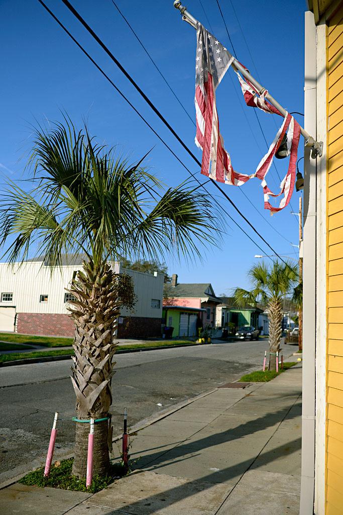New_Orleans_flag.jpg