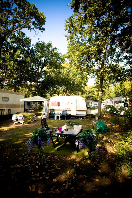 x_x_De Camping_29.jpg