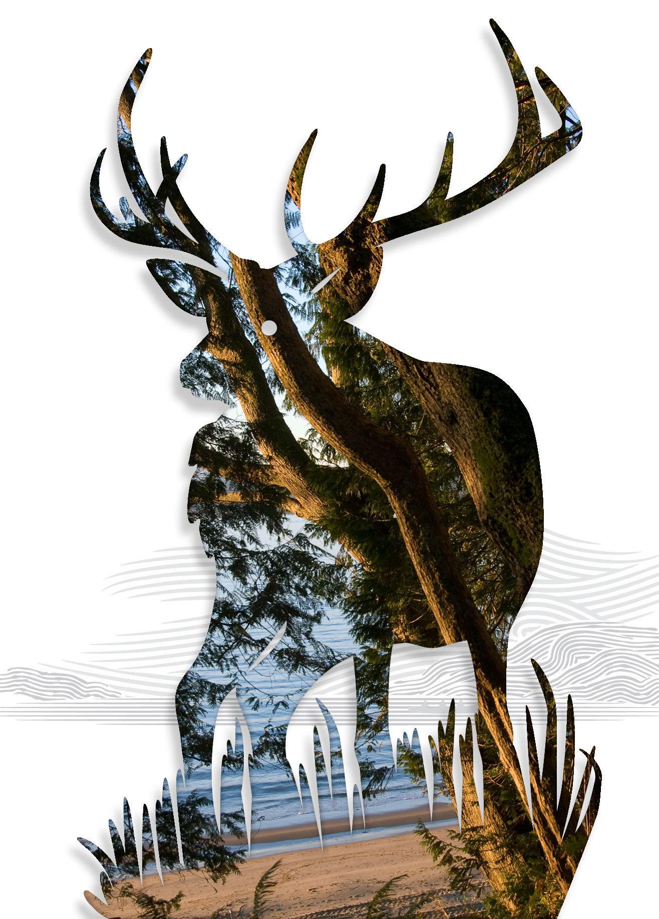 Elk-09.jpg