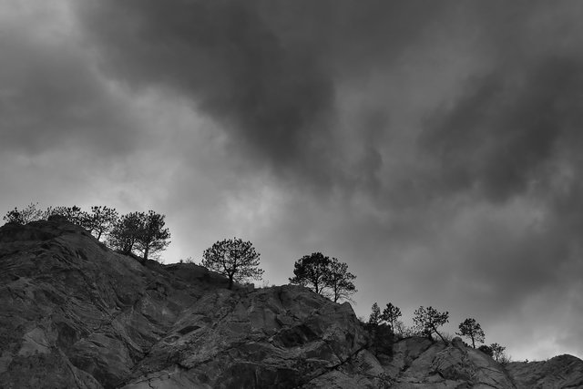 colorado-springs-landscape-black-and-white036.jpg