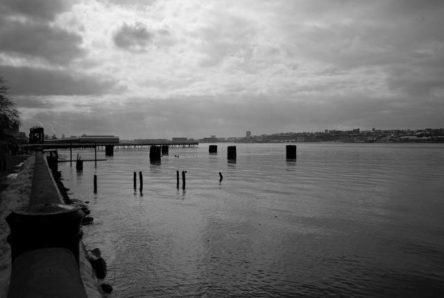Abandoned Railroad Pier Pilings