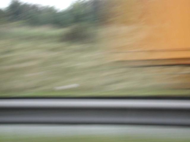 Yellow Tail & Rail