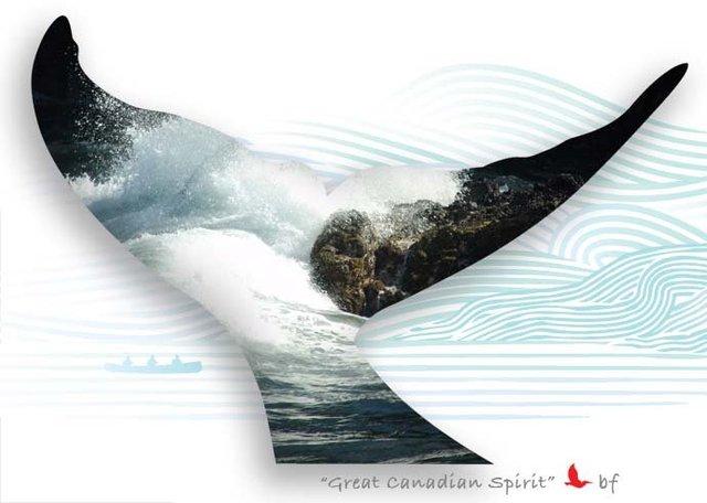 Whale-11.jpg