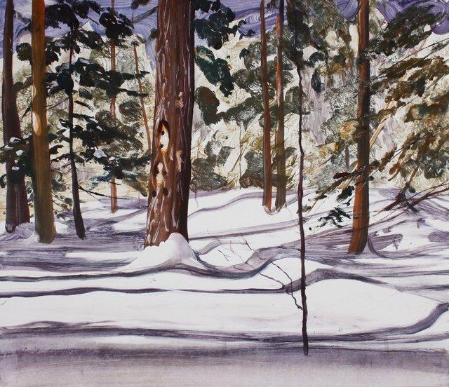 "Ithaca Winter       20 x 24"""