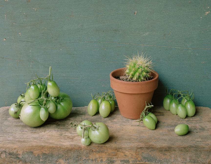 Green Tomatoes, c 2007