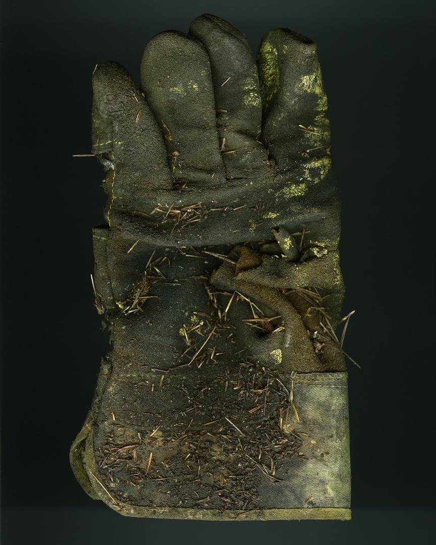 10_Glove_019 V1_FF.jpg