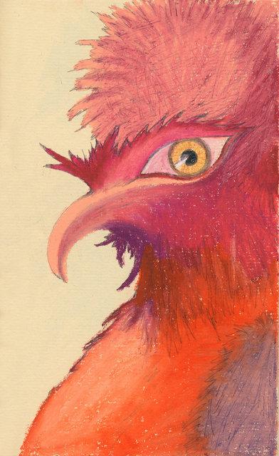 Pompous Rooster