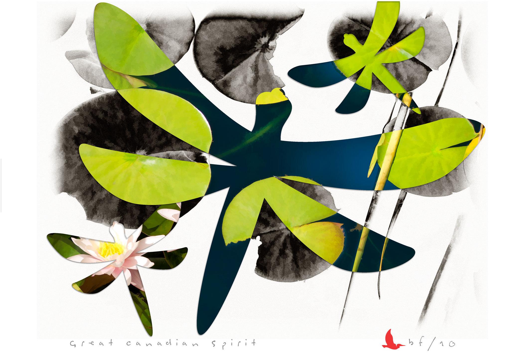 dragonfly-06.jpg