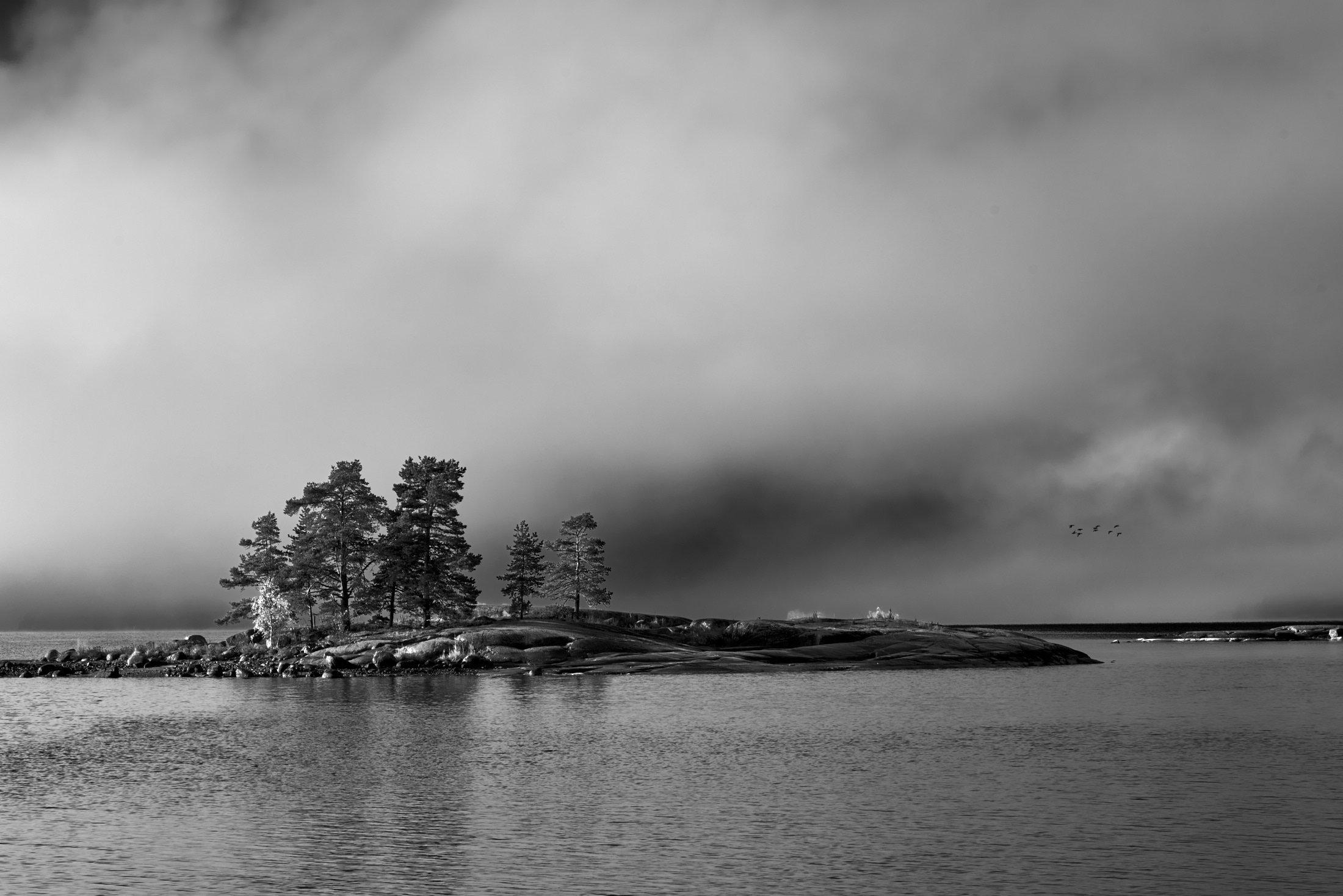 Island without Name, Study I