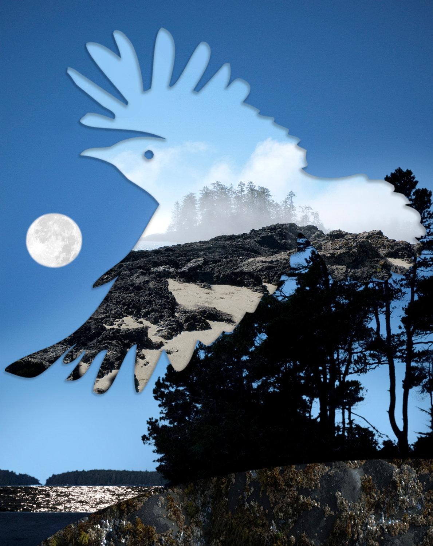 Raven-10d.jpg