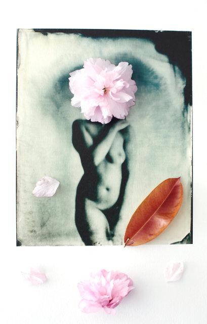 FLOWERS_1_040.JPG