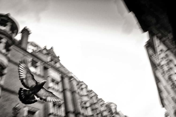 street__236.jpg