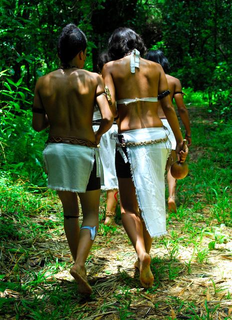 Follow the Ancestors