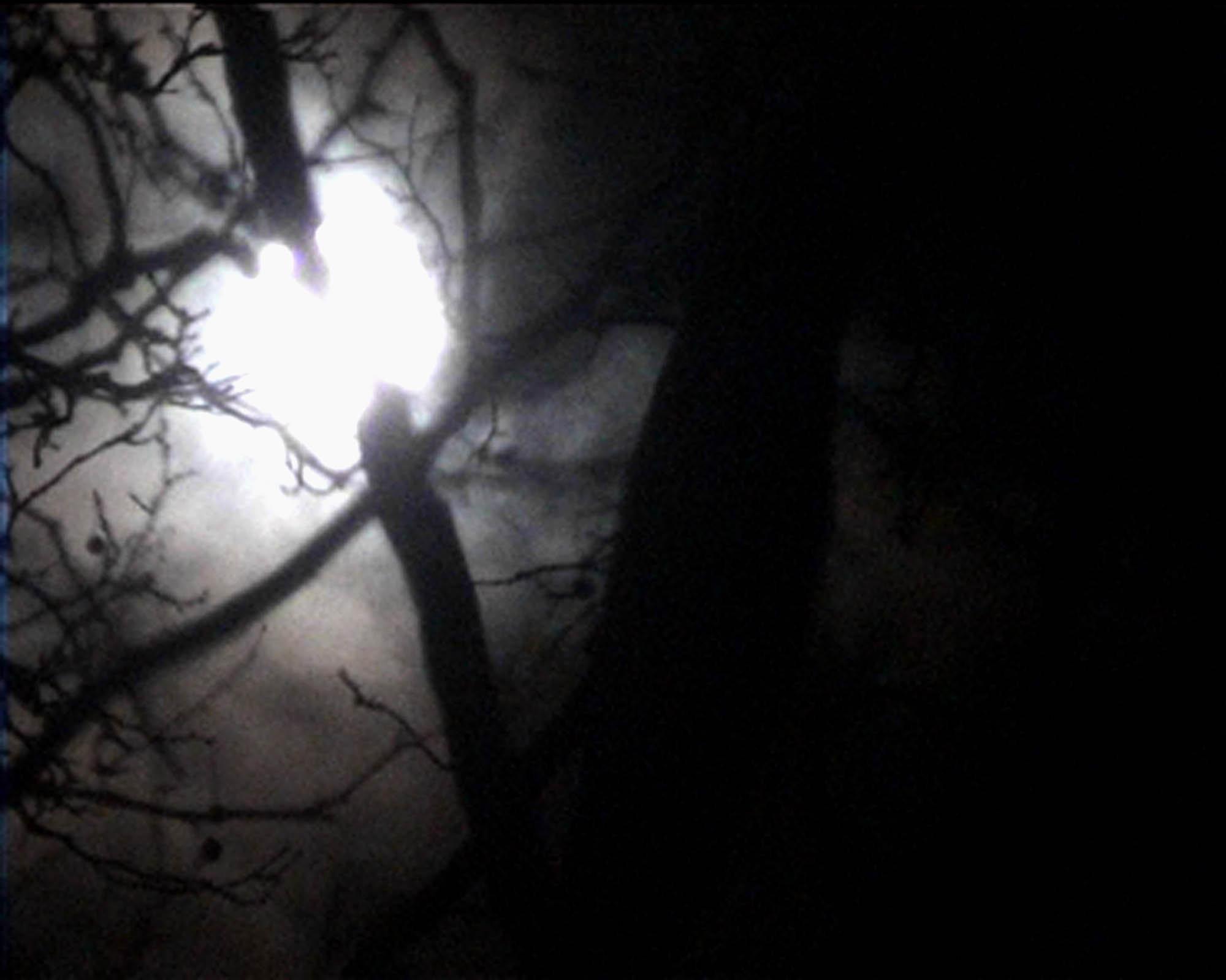 Nan Hoover La Luna 2002 (2 of 2)