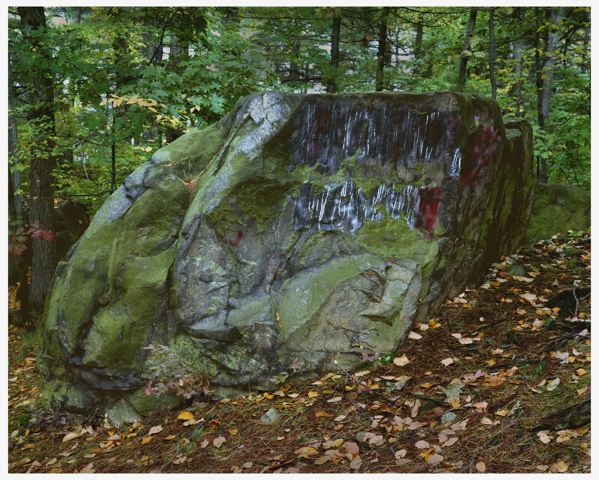 Landscapes Color Painted Rock.jpg