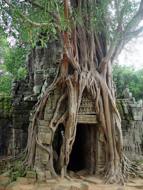 Seam Rreap, Cambodia