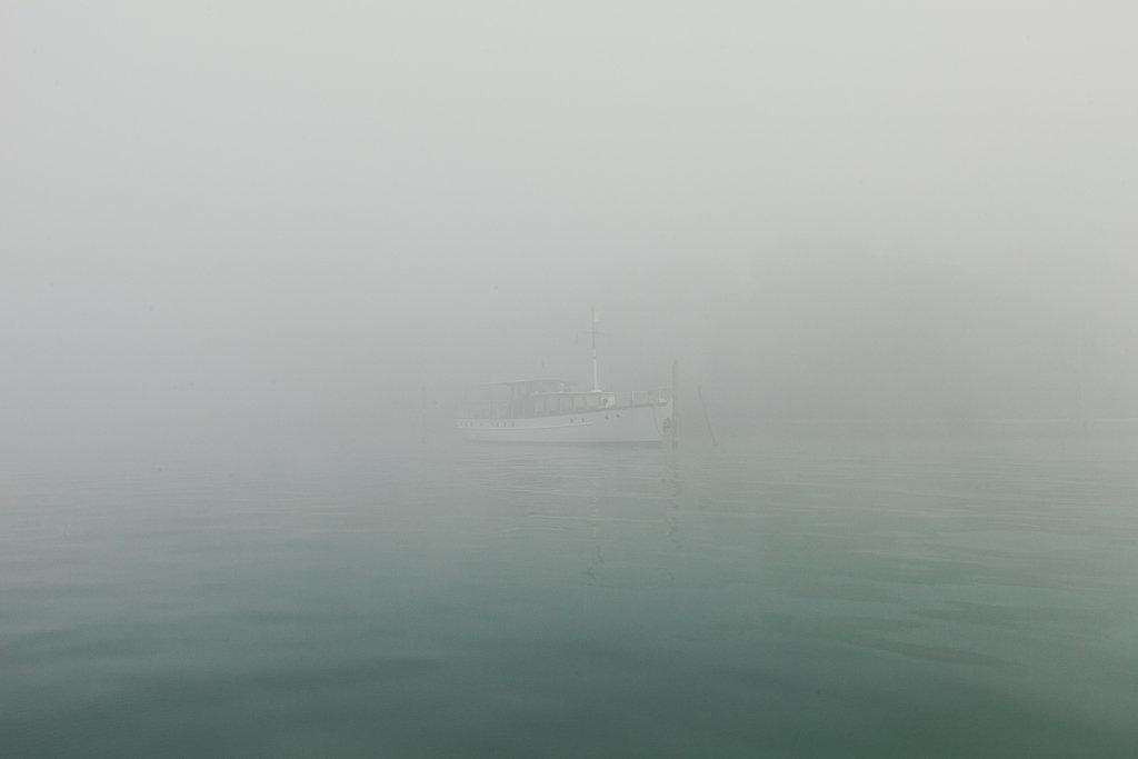 Neverland-11.jpg