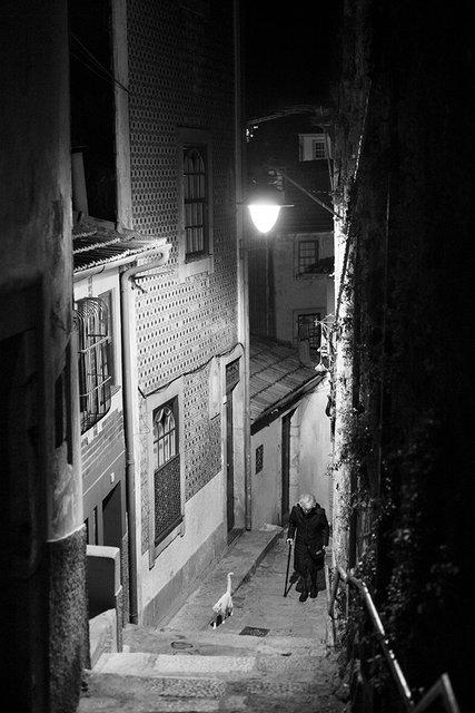 Porto Evening