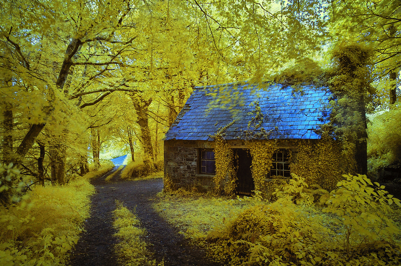 Old Cottage, Stradbally, Co. Waterford