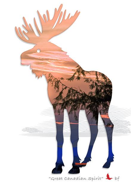 Moose-06.jpg