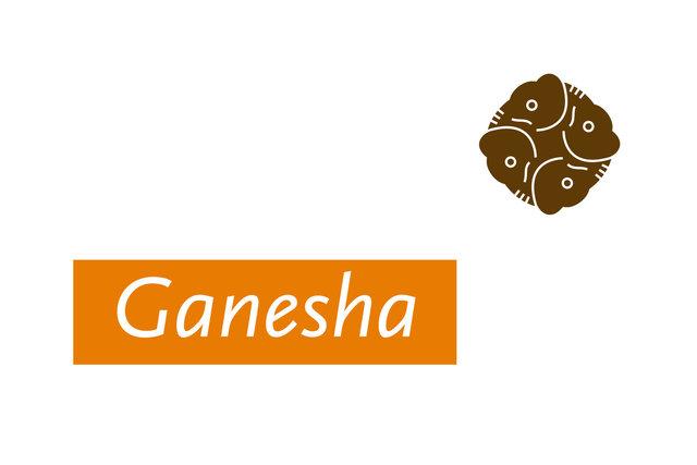 Ganesha adviesbureau