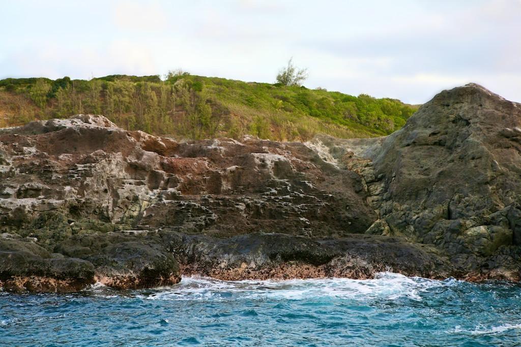 Mar rochoso com vegetação em Lighthouse
