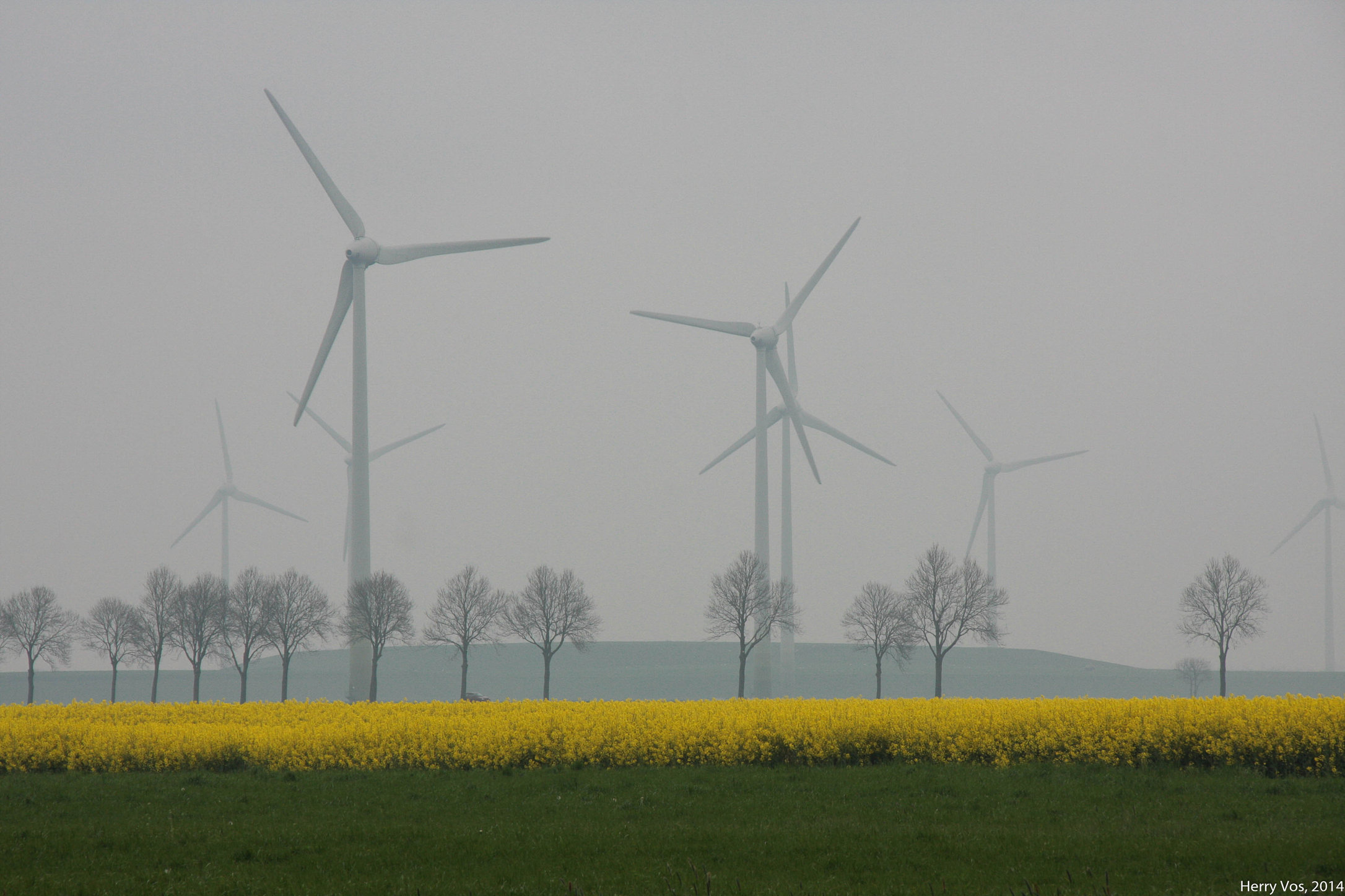 Rape and windpower