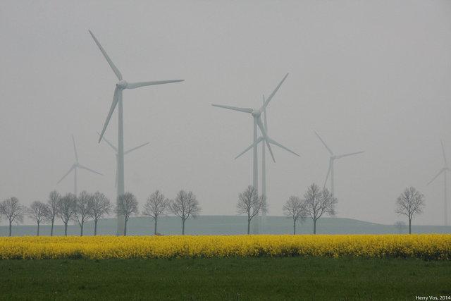 Rape and windpower