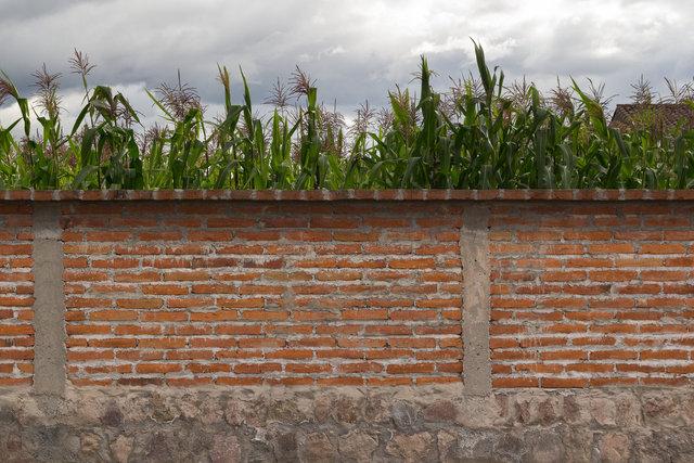 150424_Ecuador-1992.jpg