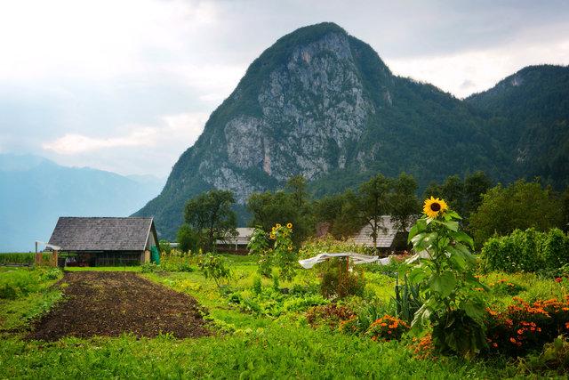 Bled, Slovenia I