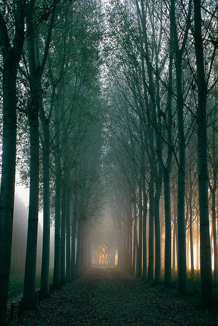 Le chemin en Bourgogne