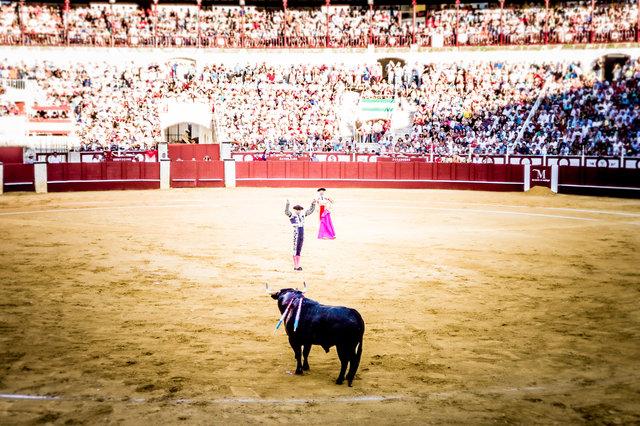 The Bullfight-89.jpg